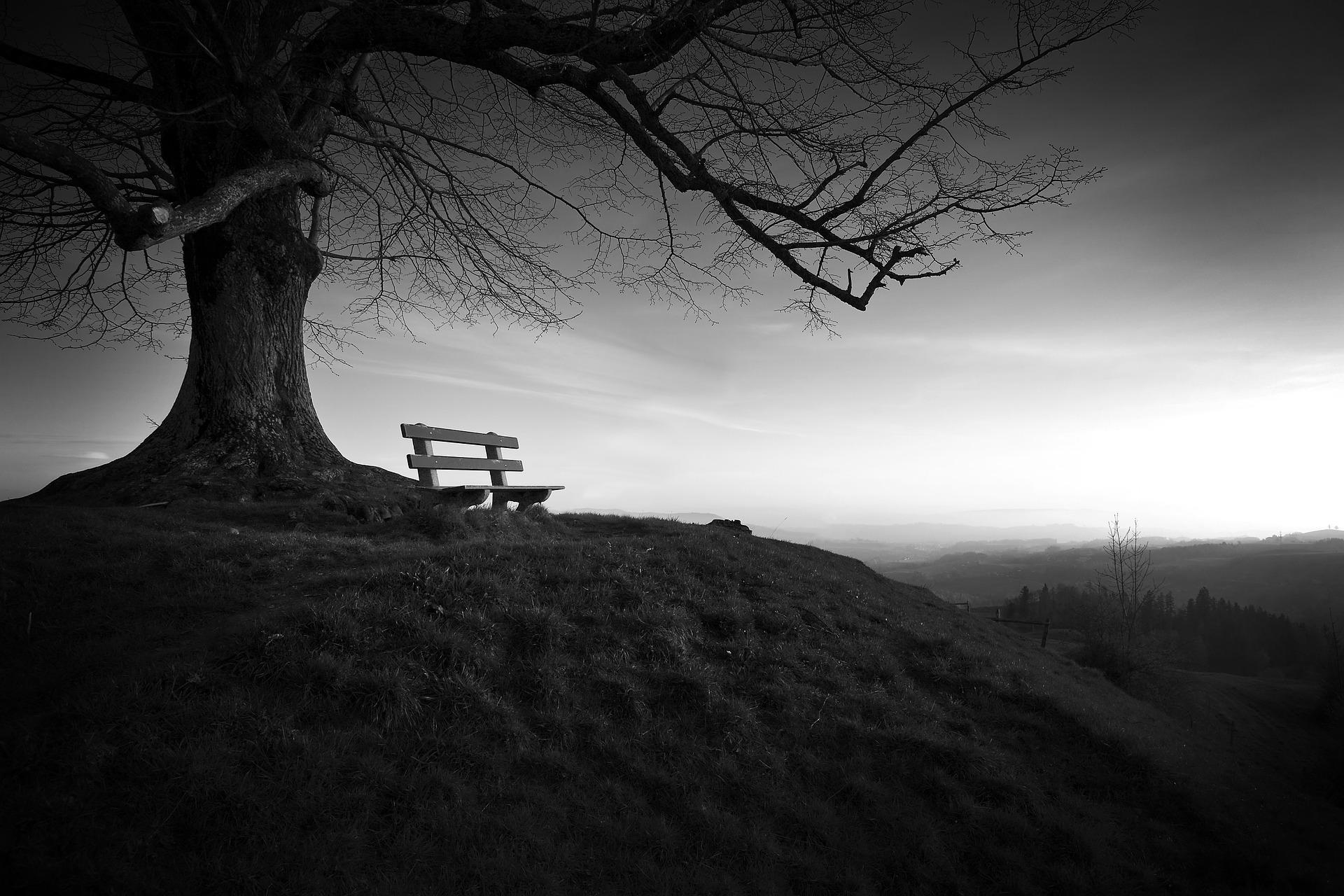 Одиночество в сети